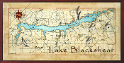 Lake Blackshears 16X32 canvas print