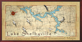 Lake Shelbyville 16X32 canvas print