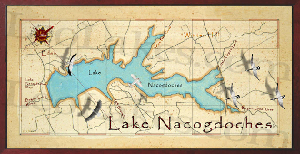 Lake Nacogdoches 10x20 print